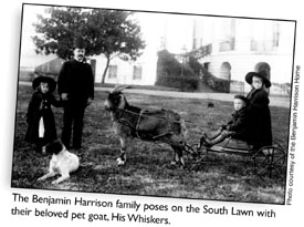 The Benjamin Harrison family poses on the South Lawn with their beloved pet goat, His Whiskers.