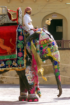 A colorful elephant at the Amber Fort.
